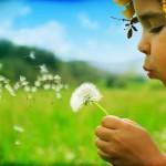10 consigli per trovare la propria felicita'